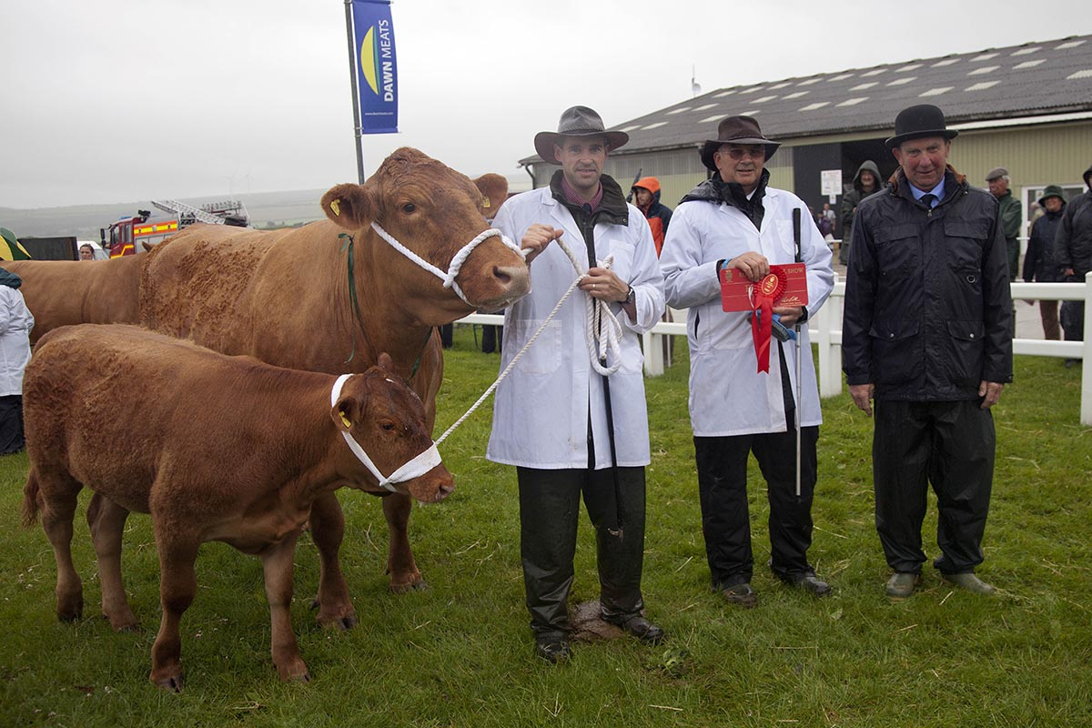 Reserve Breed Champion – Z Waddeton Hilda 78