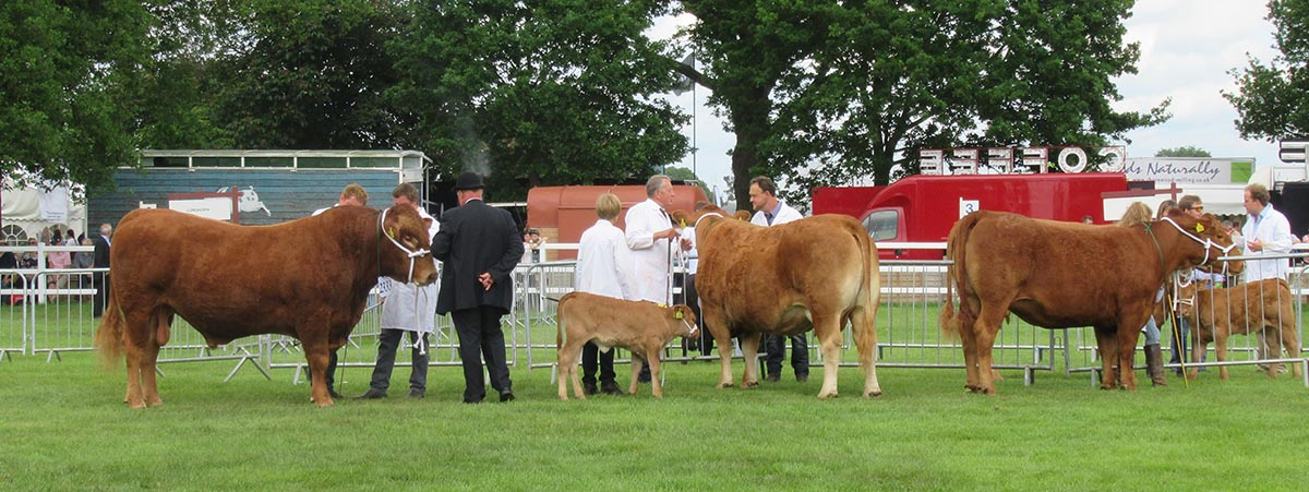 The Suffolk Show 2017